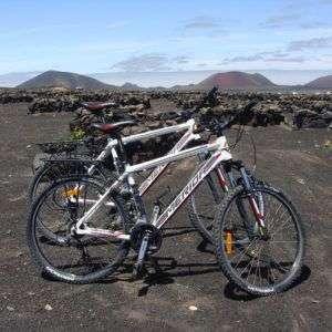 alquiler de bicis para vacaciones en lanzarote